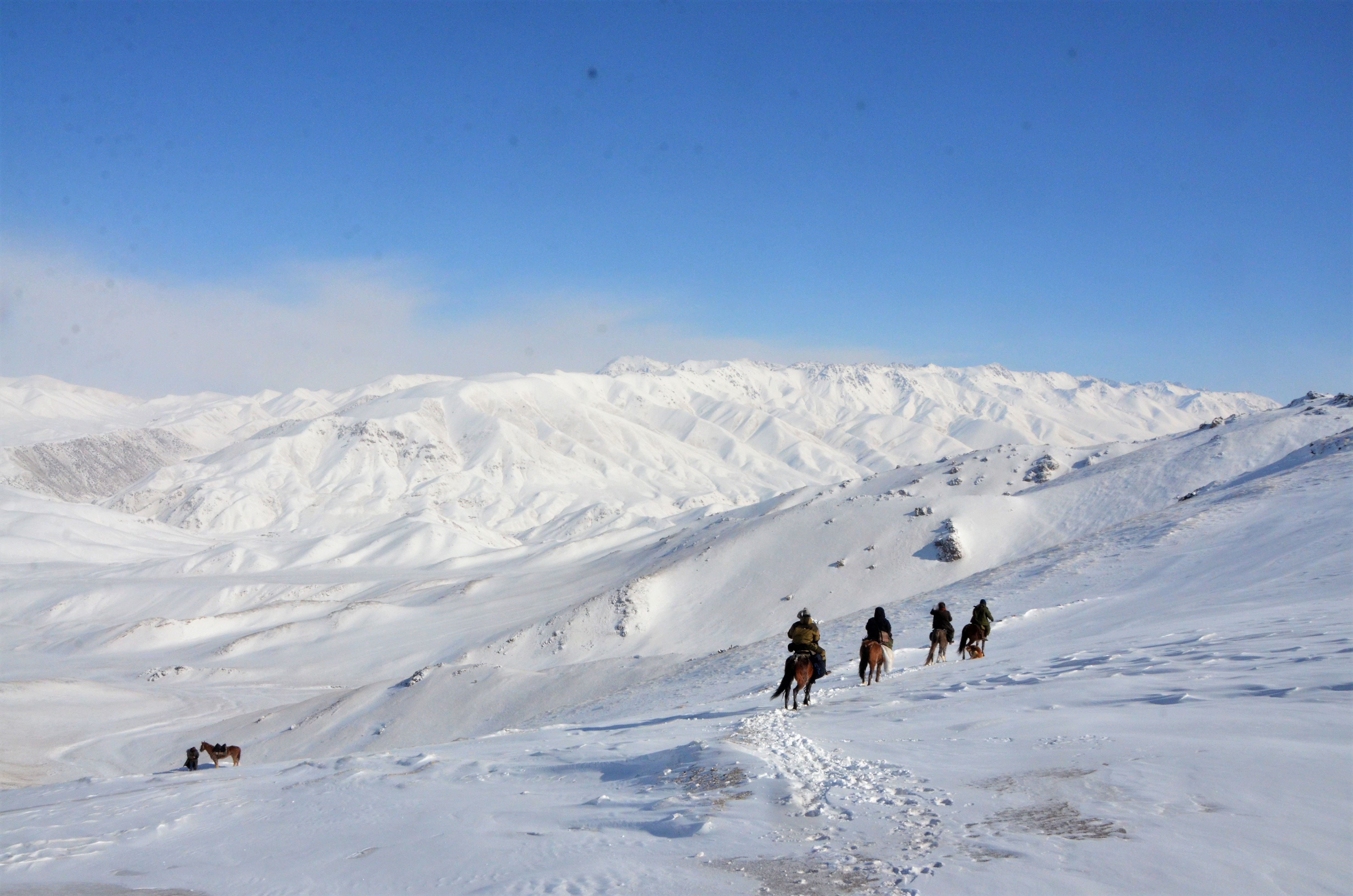 Hunting with Eagles and Skiing in Karakol
